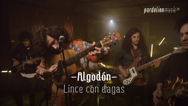 Algodón – Linces con dagas en el 13 (Live on PardelionMusic.tv)
