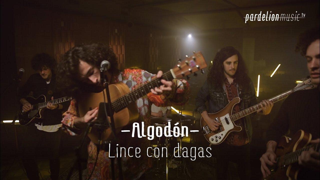Algodón – Linces con dagas en el 13 (Live on PardelionMusic.tv)