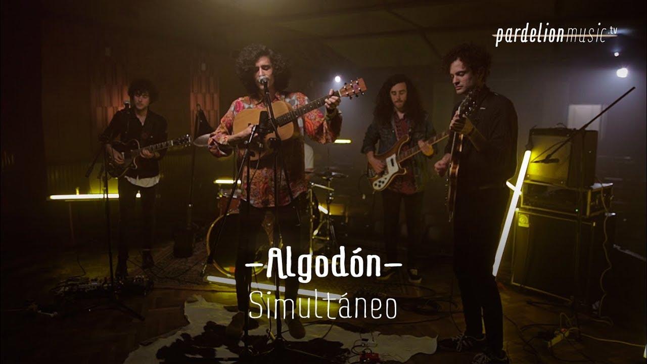 Algodón – Simultáneo (Live on PardelionMusic.tv)